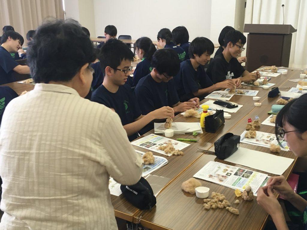コットンベイブを作る高校生たち